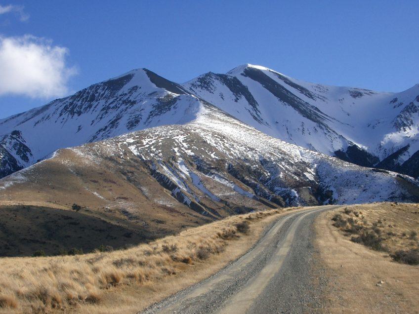 ニュージーランドで起業した話