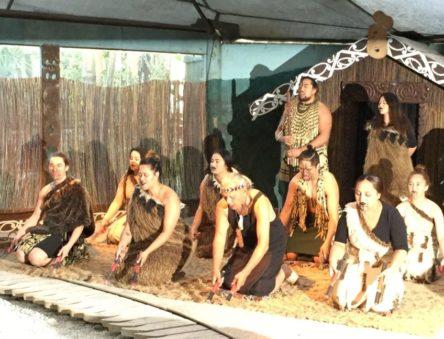 コタネマオリショー (Kotane the Maori Experience)